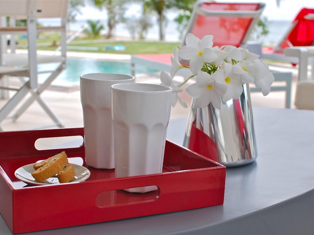 zenith-nevis-villa-luxury