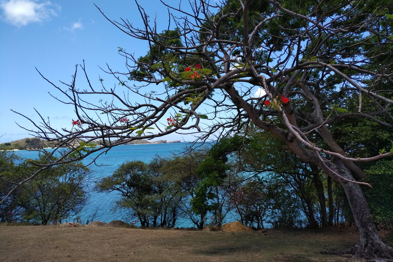 Grenada-citizenship-by-investment-program