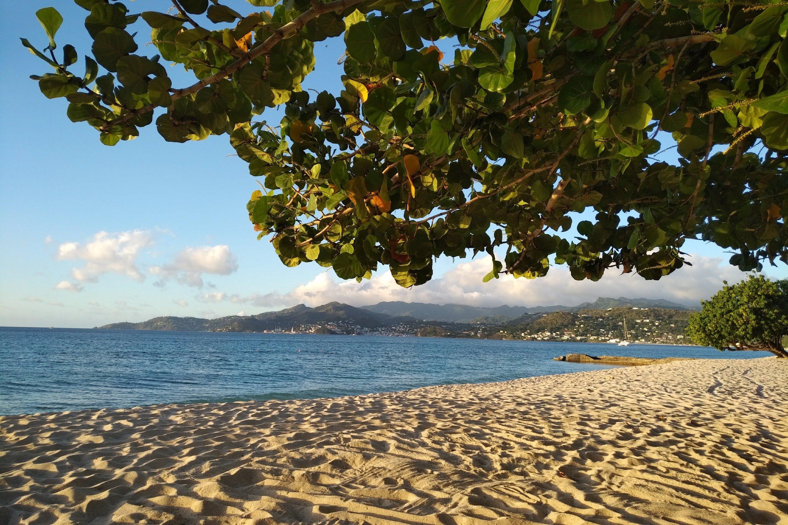 how-to-get-Grenada-citizenship