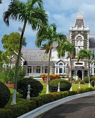 st lucia citizenship by government investment