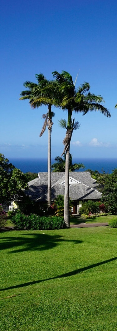 St.Kitts Citizenship by Real Estate Investment