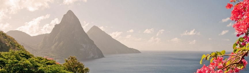 Twin Pitons and sunlit flowers in Saint Lucia