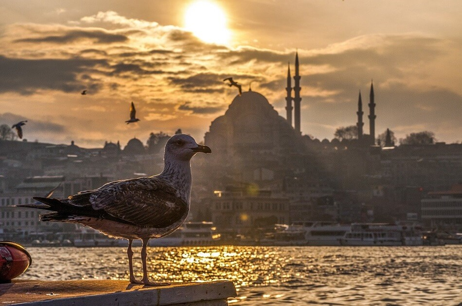 what-are-the benefits-of-having-turkish-citizenship